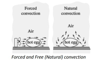 forced and free convection