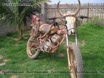 Ox bike Rofl
