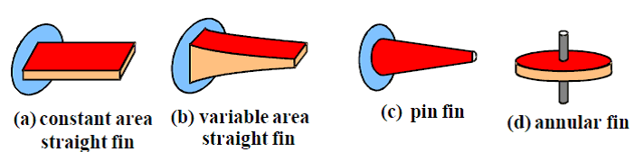 Types Of Fins