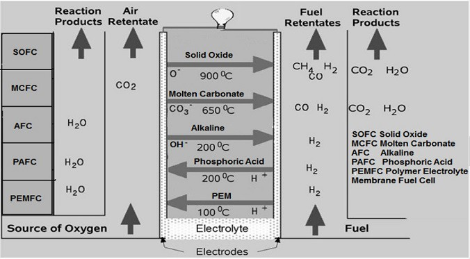 different types of fuel cell
