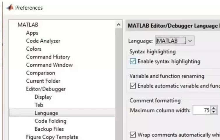 MATLAB Programming Language