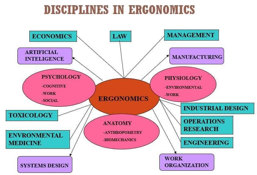 Concept Of Ergonomics