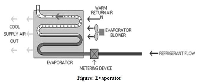 Evaporator Diagram